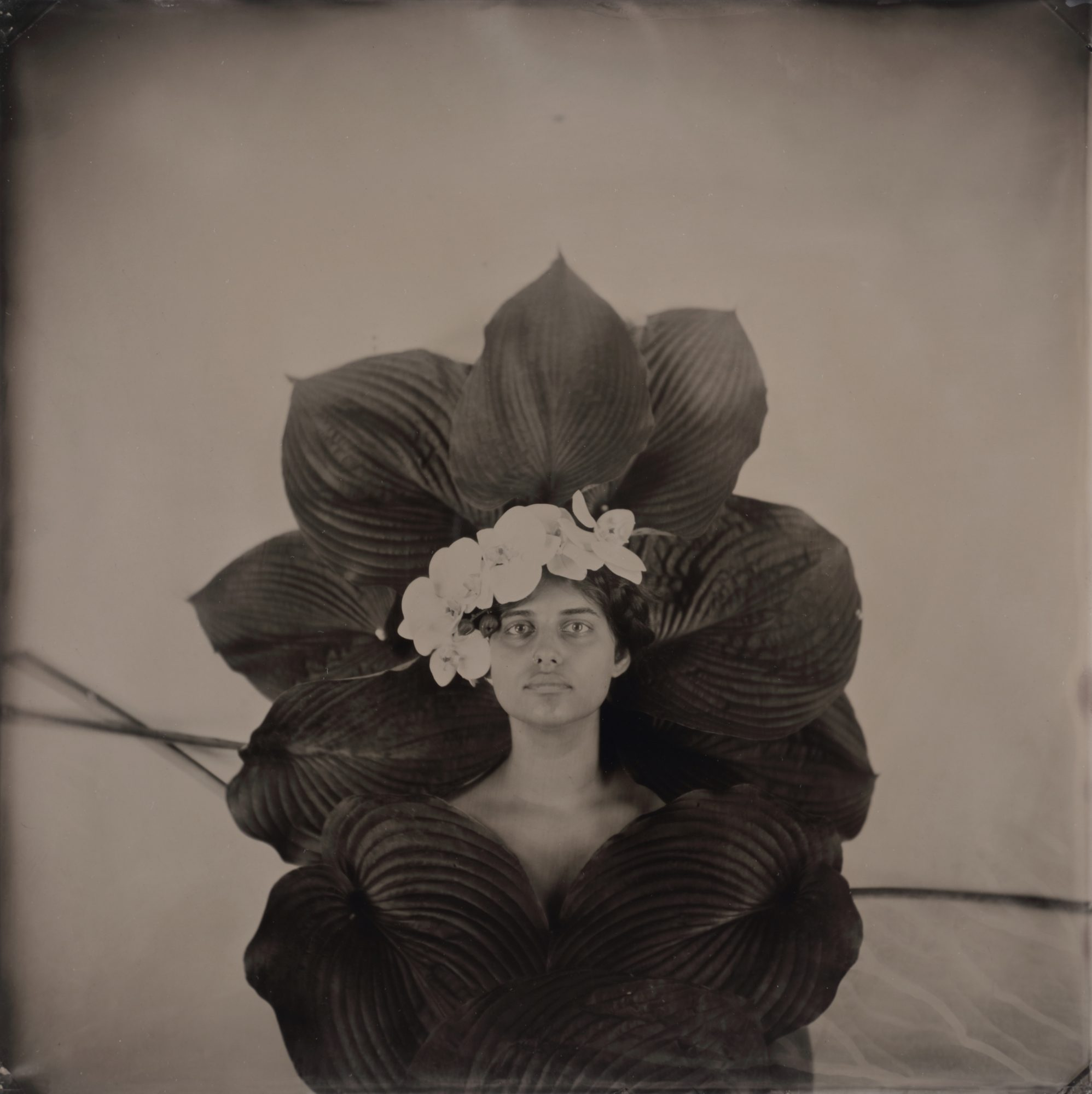 Rachel Portesi: Hair Portraits