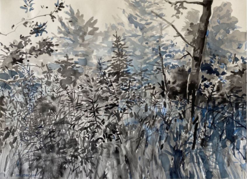We Don't Own Nature: The Artwork of Patricia Brentano