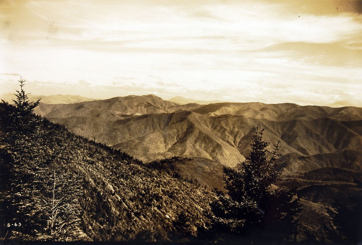Public Domain: Photography and the Preservation of Public Lands