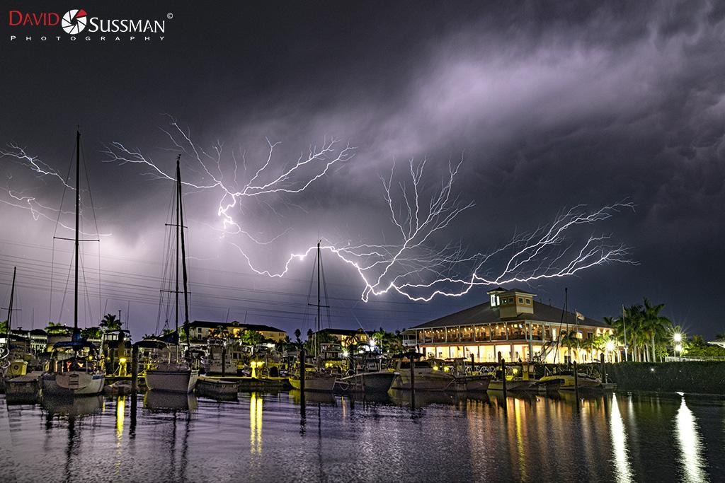 David Sussman: River Meets Harbor